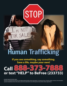 image of Human Trafficking flyer